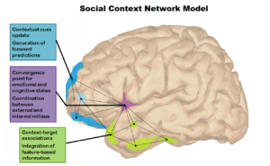 The social Context network model in Psychiatric